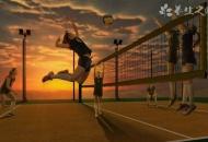 沙滩排球和排球的区别