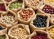 荆豆的营养价值_吃荆豆的好处