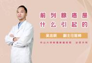 前列腺癌是什么引起的