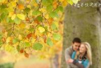 秋季养生应重在养什么