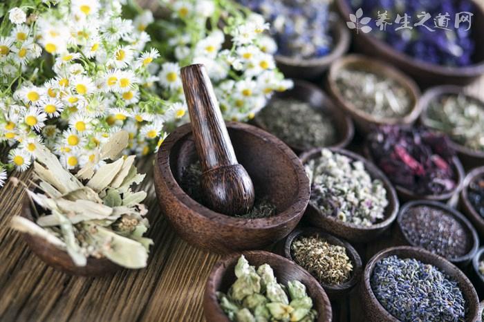 石楠叶的药用价值_石楠叶的副作用