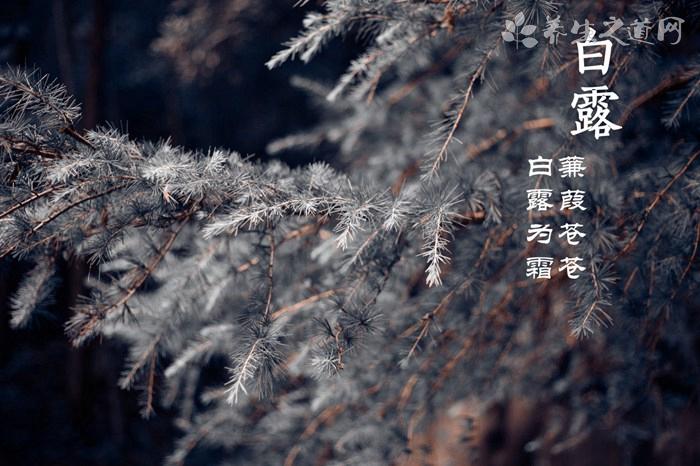 立冬��庥��
