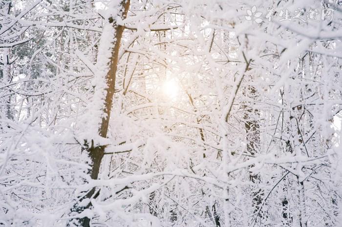 大雪节气习俗有哪些