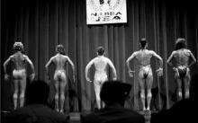 健美选手的muscle是怎么形成的?