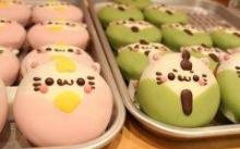食相与色相的结合:多彩的甜甜圈