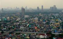 狂犬病笼罩在菲律宾的上空