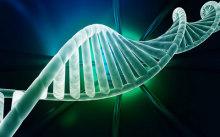 揭秘DNA亲子鉴定的神秘面纱