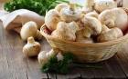 莴苣的营养价值