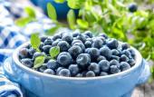养生食材 — 蓝莓