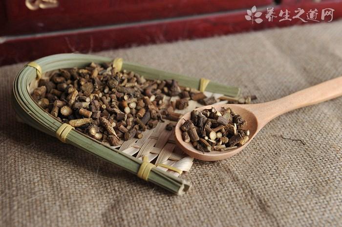 土鳖虫的功效与作用_土鳖虫的药用价值