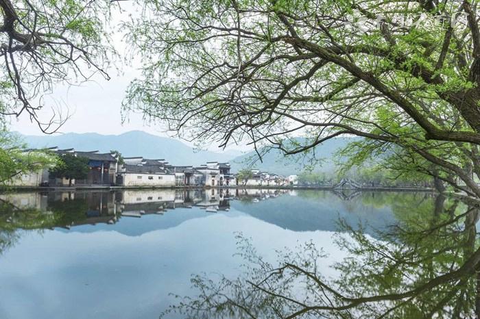 柳州市鱼峰区地图