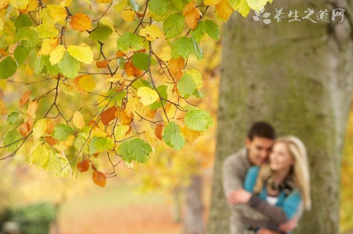 秋季除体内湿气的食物