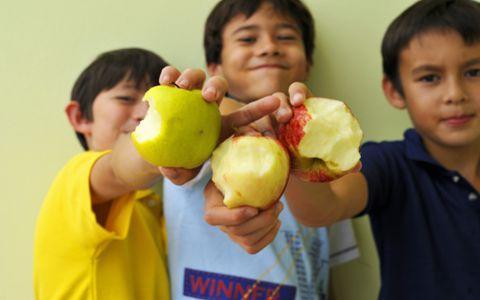 晚上吃苹果会胖吗_晚上吃苹果会长胖吗