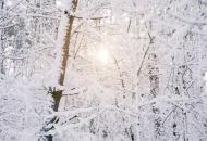 女人冬季养生小常识