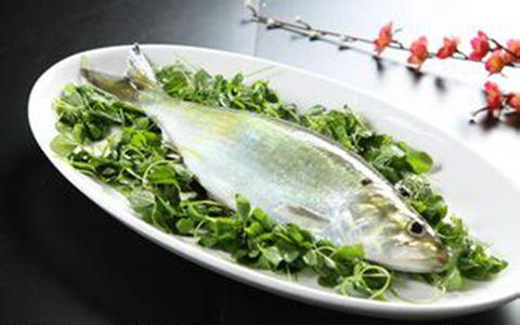 鱼白高血压能吃吗_它富含不饱和脂肪酸,具有降低胆固醇的作用,对防止血管硬化,高血压和