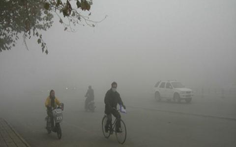 雾霾天什么好_具有清肺效的食物