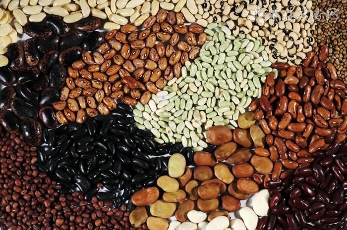 黑豆和黑芸豆的区别有哪些