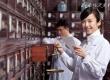 中国单身达2亿 为什么越来越多女性选择单身