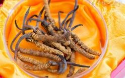 发霉的甘蔗能吃吗