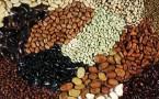 桃胶的功效作用及吃法