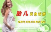 胎儿发育迟缓,是因为孕妇这样做导致的!