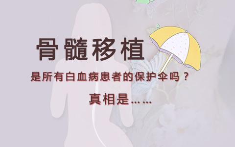 骨髓移植是所有白血病患者的保护伞吗?真相是……