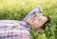 猕猴桃红茶 具有增强抵抗力具抗癌功效