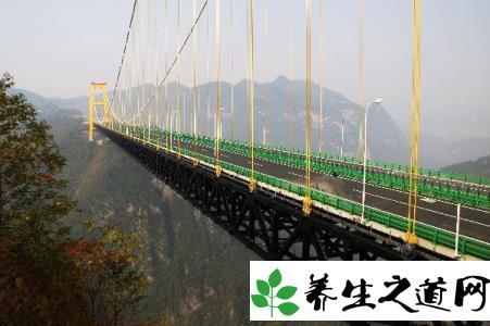 建筑世界之最:世界上最高的桥斜拉索最高点离地有343