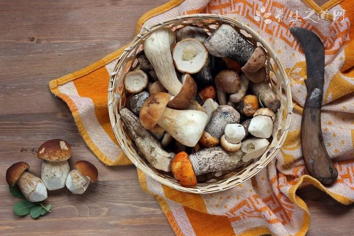 辽宁食药监发布公告:不要购买、食用野蘑菇